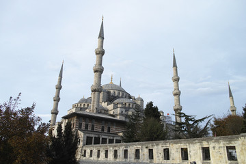 Mosque from Istanbul, Turkey