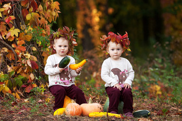 Cute little  twin girls playing with vegetable marrow in autumn park. Autumn activities for children. Halloween and Thanksgiving time fun for family.