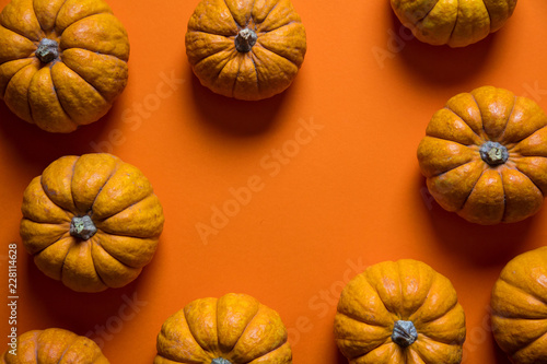 Small pumpkins on a bright orange backdrop. Halloween and thanksgiving background