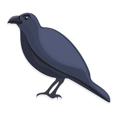Black crow icon. Cartoon of black crow vector icon for web design isolated