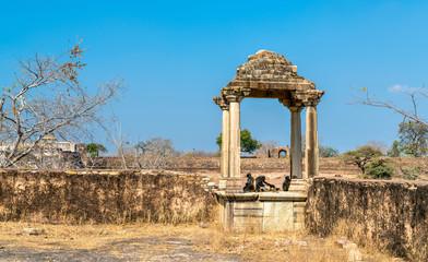 Fortifications at Rani Padmini Palace at Chittorgarh Fort. Rajasthan, India