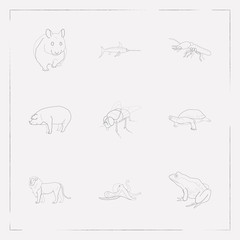 Set of alive icons line style symbols with pig, fly, frog and other icons for your web mobile app logo design.