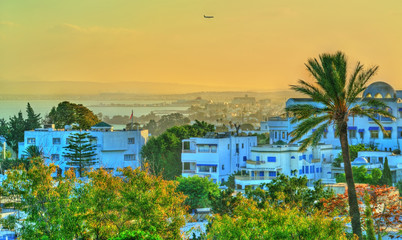 View of Sidi Bou Said, a town near Tunis, Tunisia