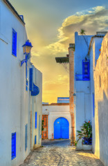 Traditional houses in Sidi Bou Said, Tunisia