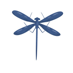 Blue dragonfly with long body and two pairs of big wings. Beautiful flying insect. Flat vector design