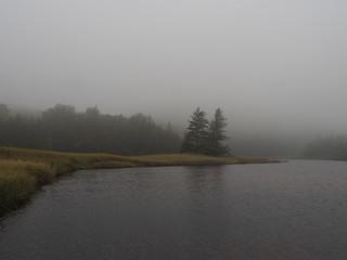 Gewässer bei Nebel nahe des Sand Beach, Maine