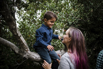 Mother looking at son sitting on tree in park