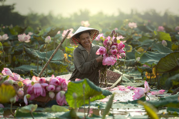 Smiling female farmer wearing Asian Style Conical Hat collecting lotus water lilies from pond in boat