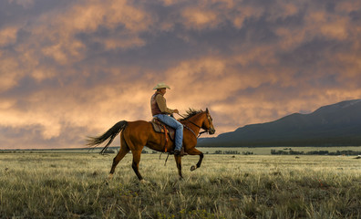 Side view of man horseback riding on grassy field against cloudy sky during sunset