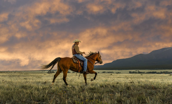 Man riding horse at field, Buena Vista, Colorado, USA