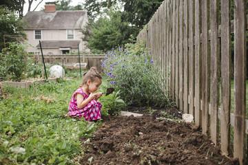 Girl planting in backyard
