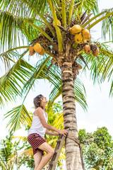 Young european man climbing on coconut palm. Bali island.