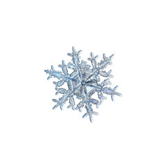 Snowflake isolated on white background. Macro photo of real snow crystal: elegant stellar dendrite with hexagonal symmetry, glossy relief surface, massive central hexagon and complex inner details.