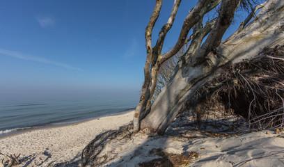 naturküste