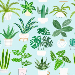 House plants in pots vector seamless pattern. Houseplant background
