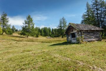 altes Holzhaus im Wald