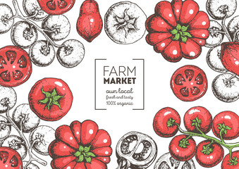Tomatoes hand drawn illustration. Organic food design template. Colored vector illustration. Healthy food frame. Farm market concept. Tomato vegetable.