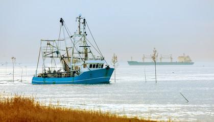 Krabbenkutter auf der Heimfahrt an der Nordseeküste, Küstenfischerei in Norddeutschland
