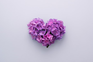 Heart shape made of purple flowers on lilac background. Gradient ultra violet colors palette. Love symbol. Top view