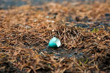 Broken Blue Egg