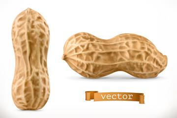 Peanut. 3d vector realistic icon