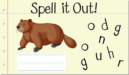 Spell English word groundhog