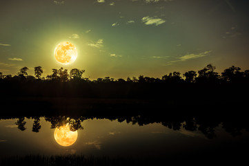 Wall Mural - Fantasy sky and bright full moon above silhouettes of trees and lake.