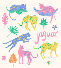 Vector collection of jaguars. Tropic wild animals and plants in