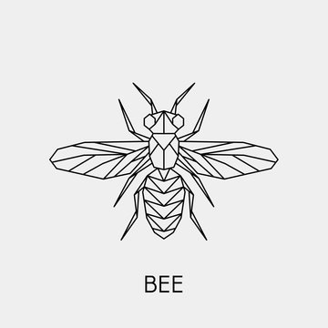 Geometric bee. Polygonal linear abstract insect. Vector illustration