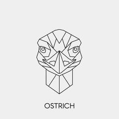 Geometric ostrich. Polygonal linear australian bird head. Vector illustration.