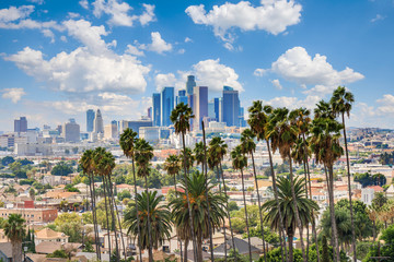 Autocollant pour porte Lieux connus d Amérique Beautiful cloudy day of Los Angeles downtown skyline and palm trees in foreground