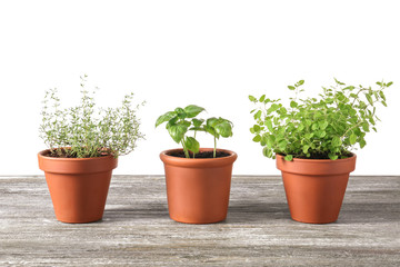 Pots with fresh aromatic herbs on wooden table against white background