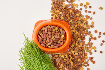top view of arranged grass, pile of pet food and plastic bowl on white surface