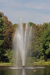 Wasser-Fontäne