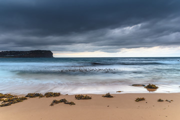 Moody Seascape with Seaweed