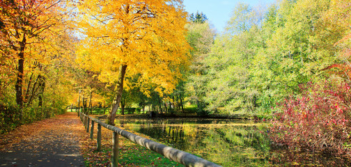 Colorful autumn in the city park with lake. Autumn Landscape.