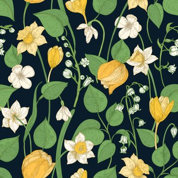 Romantic seamless pattern with tender blooming springtime flowers and leaves on black background
