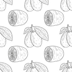 Kumquat. Fruit, leaves, branch. Sketch. Background, wallpaper, seamless, texture.