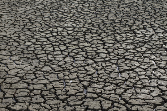 Cracked land by the drought