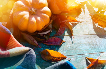 Fotomurales - Thanksgiving With Pumpkins, autumn leaves And warm blanket On Wooden Table