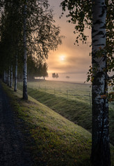 Foto op Plexiglas Zalm Idyllic sunrise landscape with road and fog at beautiful autumn morning in Finland