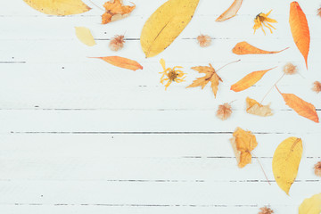 Autumn composition. Frame made of autumn dried yellow leaves on white wooden background. Flat lay, top view, copy space