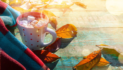 Fotomurales - Autumn composition. Cup of cocoa with marshmallow, blanket, autumn leaves on sunny background