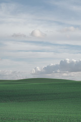 Minimalism - Green meadow and cloudy blue sky