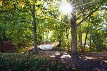 Small white bridge in the park in the sunny day.