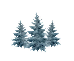 Christmas tree isolated on white background.Watercolor illustration.