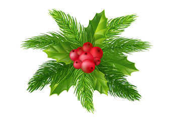 Christmas wreath. Christmas tree branches and holly berries. Element for festive design. isolated on white background without shadow.