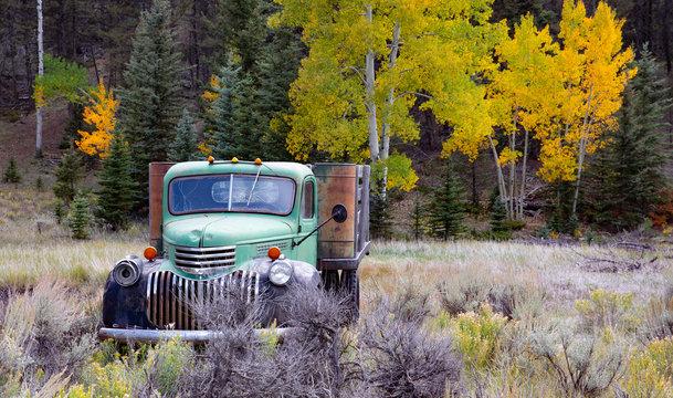 Truck Aspens