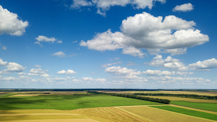 Wall Mural - Rural scenic landscape with blue sky and clouds, green fields, yellow meadows in a summer sunny day. Panoramic view from drone.
