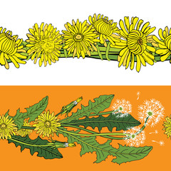 Vector set of seamless patterned brushes with dandelions. Illustration